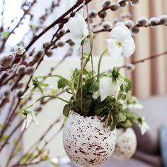 """. """"...Gyermekkoromnak szép emléke, Köszöntelek, Húsvét vasárnap! Száll a szívemre égi béke Ünnepén a Feltámadásnak..."""" - Benedek Elek… Plants, Design, Plant, Planets"""