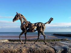 Driftwood Horses by Heather Jansch - wow! She makes lots of these!