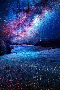 Milky Way | Sebdows Photography