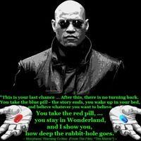 Matrix (FOLLOW THE WHITE RABBIT) by A.F.C. on SoundCloud