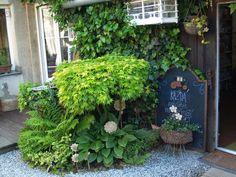 u morkusovic: května 2014 Garden, Plants, Home Decor, Garten, Decoration Home, Room Decor, Gardens, Planters, Tuin