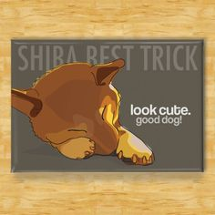 Shiba Inu Dog Breed Magnet  Shiba Best Trick by PopDoggie on Etsy, $5.99