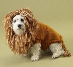 Free loom knitting patterns for dog sweaters