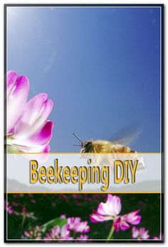 The springtime is the time when honeybees reproduce. The natural means of reproduction for honey bees is called swarming. The springtime swarming period typically last about three weeks. Bee Pictures, Honey Bees, Bee Keeping, Spring Time, Tips, Plants, Bees, Plant, Planets