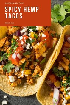 Spicy Hemp Tacos Recipes. Looking for a new recipe to try for your next taco tuesday? This spicy taco recipe would make a great addition to your weekly meal plan! Start cooking this mexican inspired recipe today!