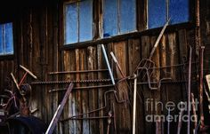 The Sharpest Tool On The Shed Photograph by Lee Craig - The Sharpest Tool On The Shed Fine Art Prints and Posters for Sale #photography #leecraig