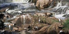 Vazão dos rios Atibaia, Jaguari e Piracicaba volta a cair e preocupa região | Agência Social de Notícias