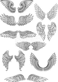 Heraldic bird or angel wings set isolated on white for religious, tattoo or heraldry design