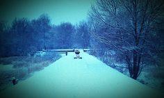 Lee Valley Filter Beds, Winter