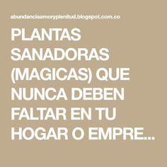 PLANTAS SANADORAS (MAGICAS) QUE NUNCA DEBEN FALTAR EN TU HOGAR O EMPRESA
