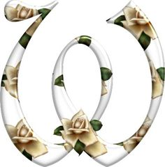 Cute Alphabet, Alphabet And Numbers, Monogram Letters, Design Letters, Beautiful Lettering, Letter W, Ivory Roses, Lettering Design, Rose Buds