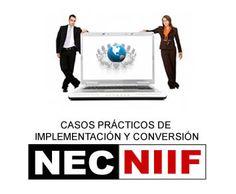 Casos Prácticos de Implementación y Conversión NEC - NIIF Movies, Movie Posters, Cases, Films, Film Poster, Cinema, Movie, Film, Movie Quotes