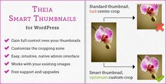 Discount Deals Theia Smart Thumbnails for WordPressYes I can say you are on right site we just collected best shopping store that have