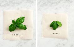 ~Thai Coconut Cucumber Salad from Love & Lemons via the @Free People blog
