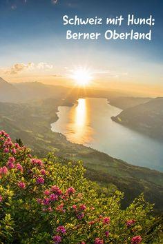 Beeindruckende Bergwelten, unberührte Naturlandschaften, über 800 glitzernde Seen und freundliche Gastwirte – das ist die Region Berner Oberland im Kanton Bern. Erleben Sie Glücksgefühle, wenn Sie den gelebten Traditionen und dem Brauchtum näher kommen und schreiben Sie Geschichten, die in Erinnerung bleiben.  #schweiz #urlaubmithund #hund #urlaub #berge #wandernmithund Adelboden, Kanton, Seen, Hotels, Camping, Outdoor, Parapente (paragliding), Campsite, Outdoors