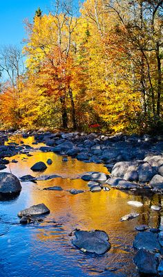 Down The Creek by Adam Pender Autumn Reflections - Little Indian Souix River, Ely, Minnesota - Photographed by Adam PenderAutumn Reflections - Little Indian Souix River, Ely, Minnesota - Photographed by Adam Pender All Nature, Amazing Nature, Beautiful World, Beautiful Places, Autumn Scenes, Fine Art, Mellow Yellow, Nature Pictures, Pretty Pictures
