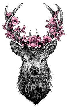 """queroserpicasso: """" stag by alex_norman """""""