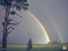 Double rainbow:  I saw one of these in Tennessee once.  I couldn't believe there were two of them.