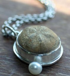 CORTEZ Sterling Silver Necklace with Fossilized Sand Dollar and Freshwater Pearl