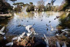 Places to visit: Villa Borghese  [district: Pinciano- Historical Center- Piazza di Spagna]