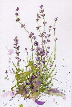 """""""Lavender - Hidcote Blue - No1"""" - Original Fine Art for Sale - © Chris Carter"""