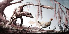 Un V. mongoliensis persigue a un ejemplar joven y gallináceo de oviraptosaurio para zampárselo. Al fondo puede verse a la preocupada mamá del polluelo. Paleoarte de Mark Witton.