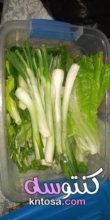 تخزين الخضروات الورقيه طازجه لمدة شهرين كيفية حفظ الخضروات الورقية طريقة تفريز الخضروات الورقيه Vegetables Food Celery