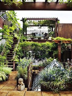 love the wildness of this rooftop garden, it seems so inviting. This would be beautiful in any setting.....