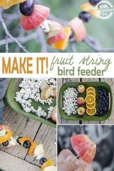 Make a Fruit Garland Bird Feeder! is part of Make A Fruit Garland Bird Feeder Kids Activities - Enjoy watching birds and other wildlife visiting your homemade fruit string bird feeder Bird Feeder Craft, Garden Bird Feeders, Wild Bird Feeders, Wild Bird Food, Wild Birds, Bird Seed Ornaments, Homemade Bird Feeders, Backyard Birds, Fruit