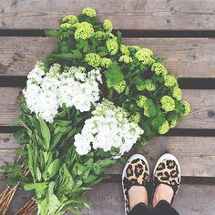 Indeco Florist | 10 Florists to Follow on Intagram | Bridal Musings Wedding Blog