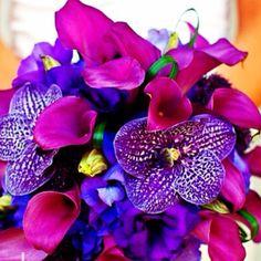 Jewel tones in flowers. Jewel Tone Colors, Jewel Tones, Color Tones, Brooch Bouquets, Bridal Bouquets, Jewel Tone Wedding, Moroccan Wedding, Purple Wedding Flowers, Yarn Colors