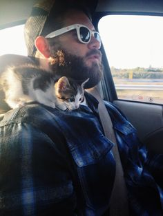 When this little kitten helped give his human directions. | 31 Times Cats Made The World A Better Place