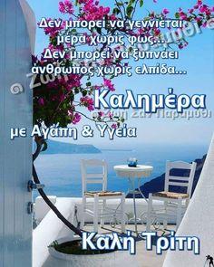Beautiful Pink Roses, Good Morning, Greece, Bom Dia, Buen Dia, Bonjour, Buongiorno, Grease