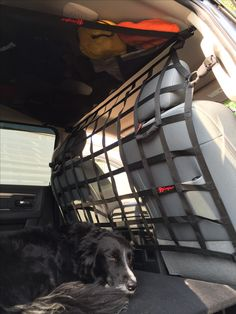 #RAMTRUCK dog/gear barrier