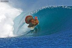 Thanksgiving Water Games, Thanksgiving, Waves, Outdoor, Good Vibes, Outdoors, Water Play, Thanksgiving Tree, Ocean Waves
