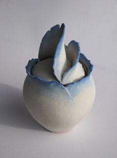 White botanical lidded Jar with blue edges / by ECHOofNATURE, $120.00