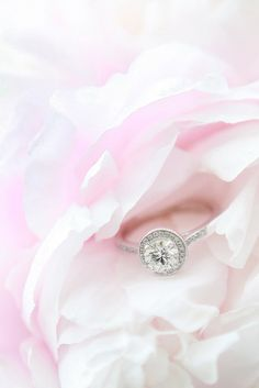Wedding Photo Gallery - Dreamlife Photos and Videos