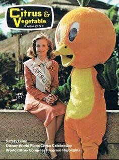 The Florida Orange Bird! The Orange Bird was created in 1970 by Disney designers Bob Moore and Don MacLaughlin as a mascot for the Florida Citrus Commission. Old Florida, Vintage Florida, Florida Girl, Disney Parks, Walt Disney, Disney World Characters, Walter Elias Disney, Florida Oranges, Orange Bird