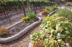 Straw Wattles for Garden Bed Edging - Organic Gardening - MOTHER EARTH NEWS