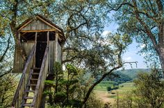 When we see or just imagine a tree house, we will be amazed of its magnificent beauty. It looks so serene, so relaxing and the ambiance, so comforting. Baby Dekor, Building A Treehouse, Treehouse Ideas, Wooden Gazebo, Shed To Tiny House, Tree Care, Game Reserve, In The Tree, Travel Deals