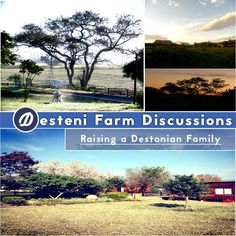 In this series of 3 discussions, Destonians at the Desteni Farm describe real life experiences with raising young children.  How can you work with your children in a stable and directive way when they throw tantrums or demand things that are not practical?  Can you as a parent build a relationship of trust, equality and integrity so that your children learn that manipulation and tantrums won't work, and that you will stick by your principles?  What do your children show you about yours...