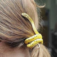 Sneaky serpent slithering through on a 🐍 Animals And Pets, Baby Animals, Funny Animals, Cute Animals, Cute Reptiles, Reptiles And Amphibians, Composition Photo, Serpent Animal, Cool Snakes
