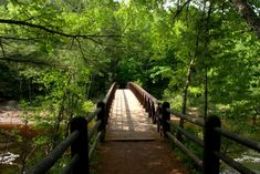 Your Kids Will Love Doughboys Nature Trail, An Easy Waterfall Hike Right Here In Wisconsin Wisconsin State Parks, Wisconsin Vacation, North Country Trail, Cascade Falls, Granite Falls, Camping Near Me, Waterfall Hikes, Best Hikes, Places To See