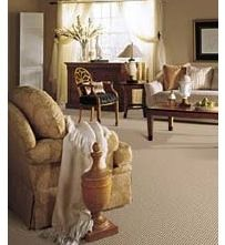 We'll make your carpets look new again. Alec's Carpet & Upholstery Cleaning LLC                 781-871-4428