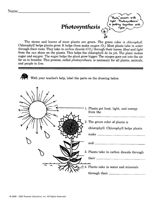 Photosynthesis Worksheet | Things to learn | Pinterest ...