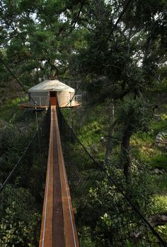 Beautiful 321sq/ft tree house in Austin, Texas. This hotel room is for romantic adventure seekers who want to spend a night with the birds.