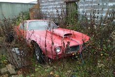 Barn Find Race Cars | ... -PONTIAC-FIREBIRD-DRAG-RACER-JEKYLL-HYDE-barn-find-bush-find-race-car
