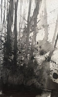Paul Fowler ‏ Daily painting no61 'Trees, Winterbourne wood' Pen/ink sketch #dailypainting #art