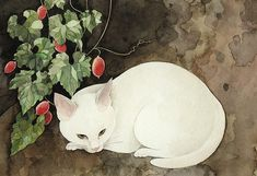 Midori Yamada Watercolor