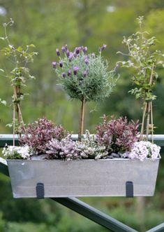Resultados da Pesquisa de imagens do Google para http://deardesigner.co.uk/wp-content/uploads/2011/03/The-Balcony-Gardener-English-Country-Garden-Window-Box1.png